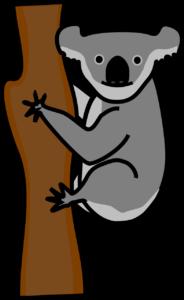 koala pendurado na árvore olhando O que significa IT e como usá-lo em uma frase