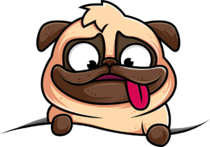 cachorro engraçado da raça pug tenta entender O que significa IT e como usá-lo em uma frase